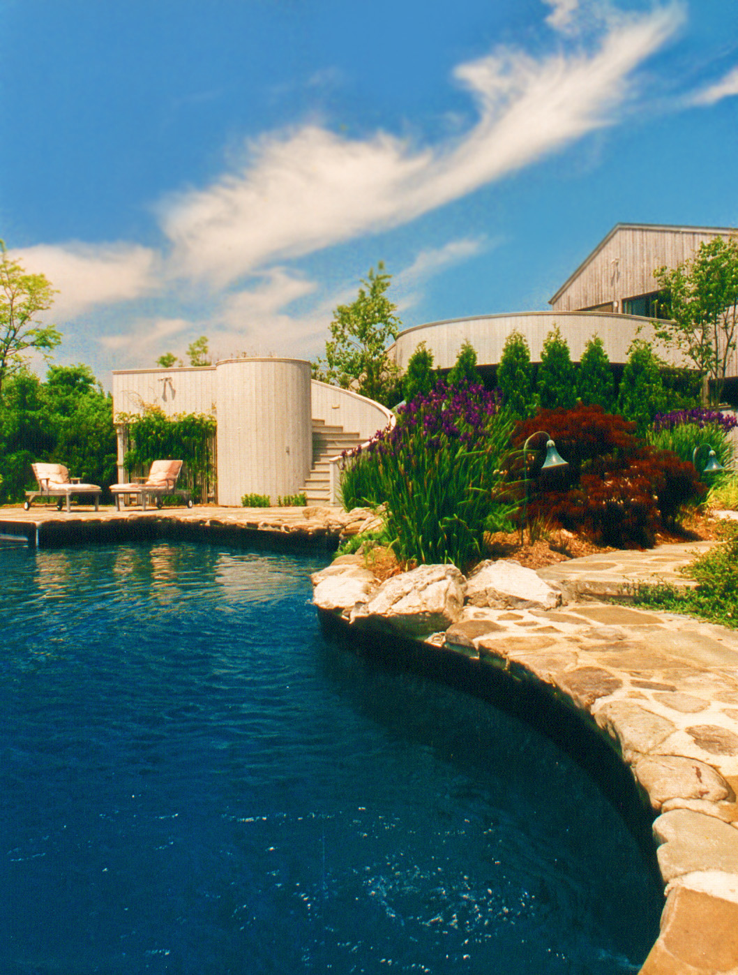 Natural pool with natural planting custom decking and a bluestone patio in Muttontown
