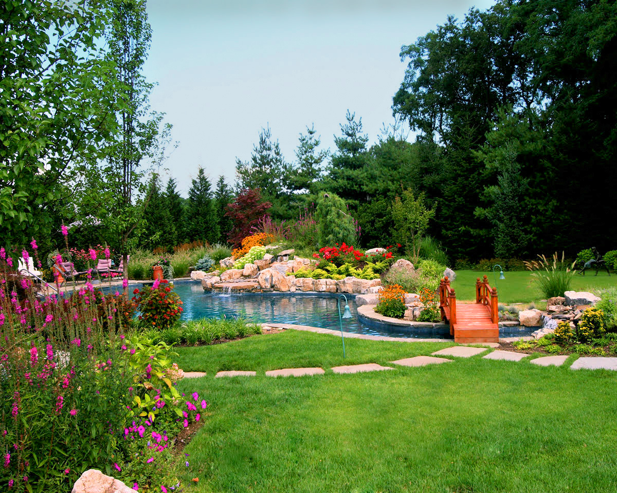 Sod lawn free form pool  natural  and waterfall for Brookville home and exotic planting